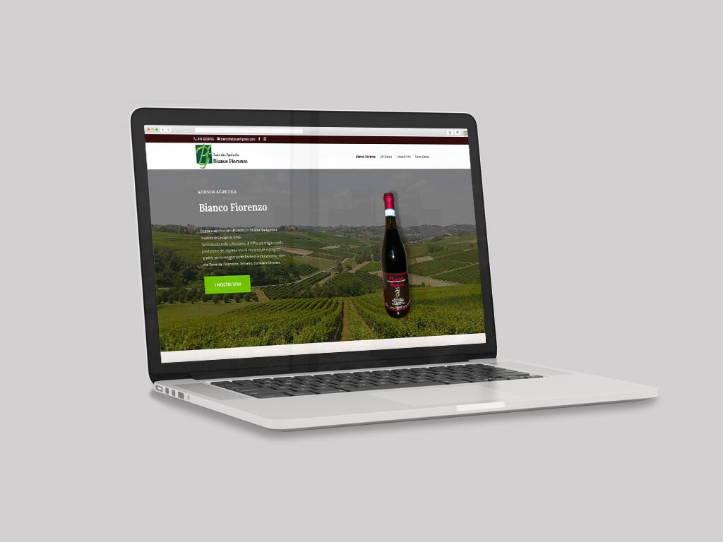 sito web vetrina azienda vinicola